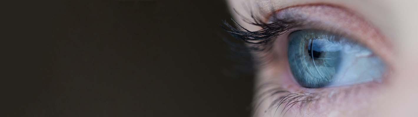 49db016d191f Seton Optometry and Deerfoot Meadows Optometry